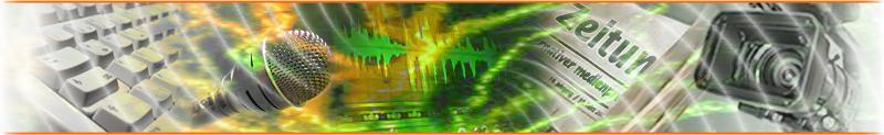 Grafik von www.alternativer-medienpreis.de