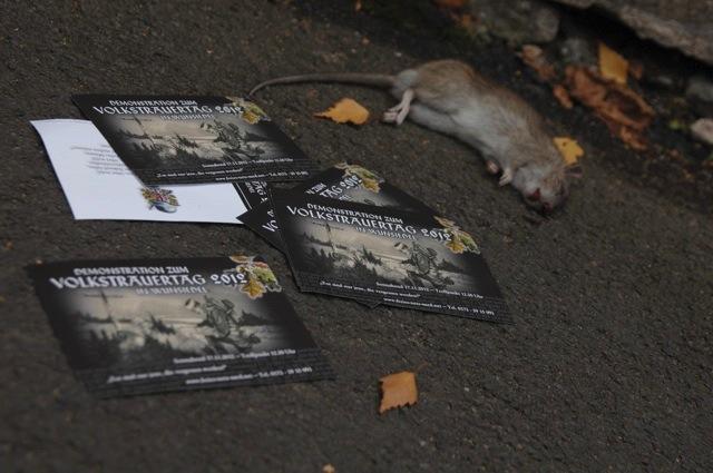 Neonazis arrangierten am Ort der späteren Gegenkundgebung eine tote Ratte und Flyer ihres Aufmarsches als Drohung an Nazigegner_innen. Das 'Freie Netz Süd' schrieb im Nachhinein darüber offen auf seiner Webseite.  Foto. a.i.d.a.