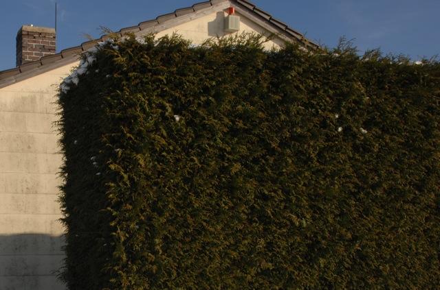 Das von den Neonazis angemietete Haus am Rande von München-Obermenzing. Foto: a.i.d.a.