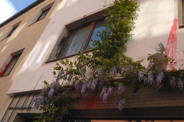 Durch Farbbeutel beschädigte Hausfassaden in der Münchner Ligsalzstrasse. Foto: Robert Andreasch